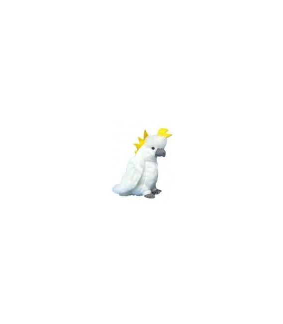 Cockatoo - White