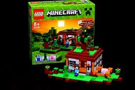 LEGO® Minecraft™ The First Night